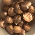 benefici castagne fresche
