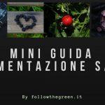 Mini guida alimentazione sana